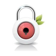 Customer Pin (Quick Verification Tool)