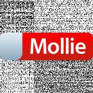 Mollie Payment Gateway