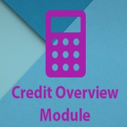 Credit Overview