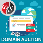 Domain Auction