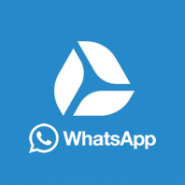 API Whatsapp