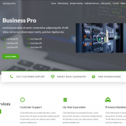 Business Pro WordPress Hosting Theme - WHMCS 7.7 + Ready