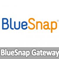 BlueSnap