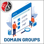 Domain Groups
