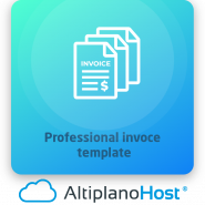 Professional invoce template