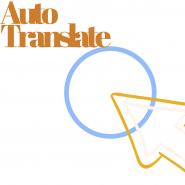 Auto translate WHMCS