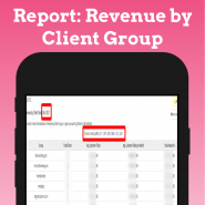 Revenue by Client Group - Opensource