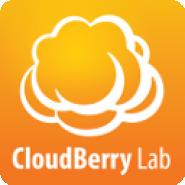 MSP Backup/ Cloudberrylab.com addon
